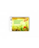 Akvarelinis sąsiuvinis SMLT, A4, 200 g, klijuotas, (10)  0708-205