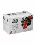 ŽOLYNĖLIS Vaisinė arbata Vasaros skonis su miško uogomis, 40g (2g x20)