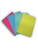 Sąsiuvinis plastikiniu viršeliu SMLT A5, 96 lapai langeliais