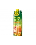 Sultys Happy Day įvairių vaisių 100 % 1 l  x 2 vnt.