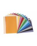 AD Class Segtuvėlis skaidriu viršeliu 100/150 violetinė, pakuotėje 25vnt