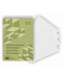 Rašomasis popierius SMLT, A4, langeliais (100)  0703-002