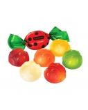 "Želė saldainiai ""Ladybird"" Roshen nord, 6 pak. po 1kg"