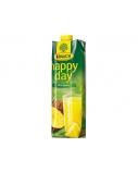 Sultys Happy Day ananasų 100 % 1 l  x 2 vnt.