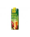 Sultys Happy Day obuolių 100 % 1 l  x 2 vnt.